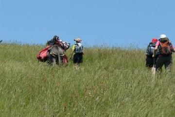 Randonnée liberté en Bauges avec un âne