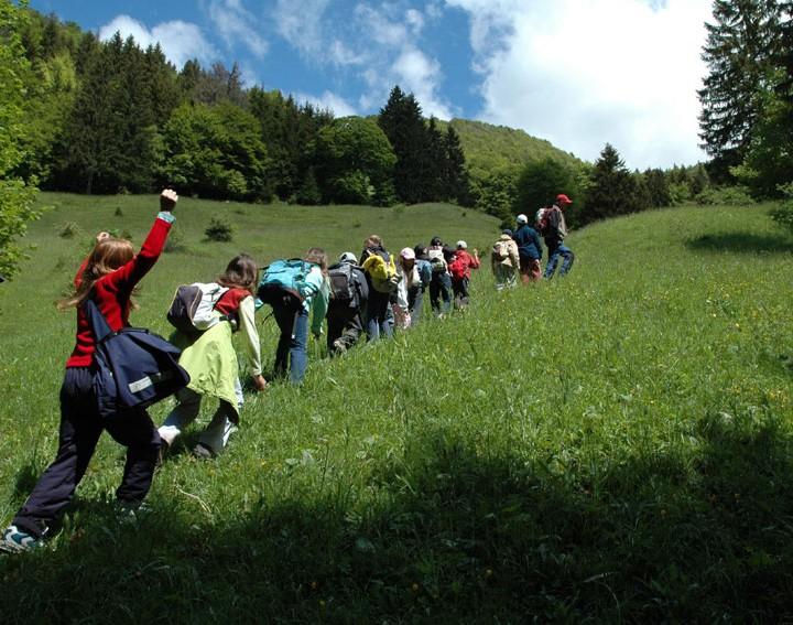 Classe découverte dans les alpages